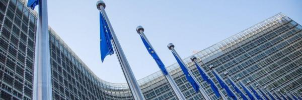Embedded thumbnail for What is the best way of learning EU institutions and policy?
